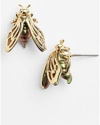 Alexis Bittar 'Lucite' Bumblebee Stud Earrings - Lyst