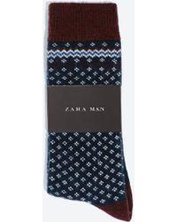 Zara Flies Fantasy Socks - Lyst