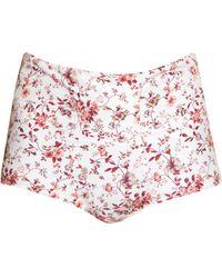 Etro - Floral-print High-rise Cotton Briefs - Lyst