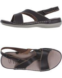 Scholl - Sandals - Lyst