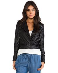 Greylin - Roxie Faux Leather Jacket in Black - Lyst