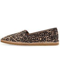 Vc Signature Alisaa Leopard-Print Slip-On Loafer - Lyst