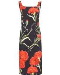 Dolce & Gabbana Floral-Printed Dress - Lyst