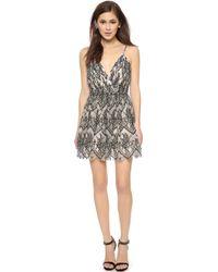 Alice + Olivia Cara Flared Dress - Black/Ivory - Lyst