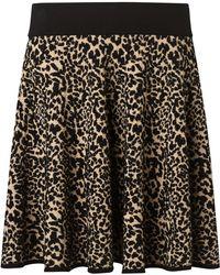 Somerset by Alice Temperley - Animal Knit Skirt - Lyst