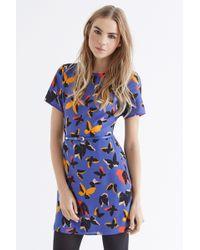 Oasis Pop Art Butterfly A Line Shift - Lyst