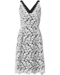 Erdem Elizabeth Heavylace Dress - Lyst