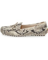 Cole Haan Grant Snake-Print Leather Driver - Lyst
