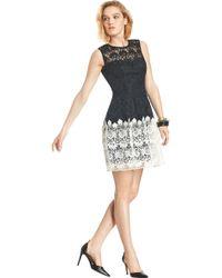 ABS By Allen Schwartz Julia Contrast Lace Dress - Lyst