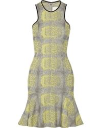 Yigal Azrouel Leather Trimmed Snake Jacquard Dress - Lyst