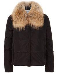 Max & Moi | Racoon Fur Collar Puffer Coat | Lyst