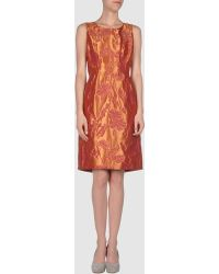 Vera Wang Lavender Short Sleeveless Dress - Lyst