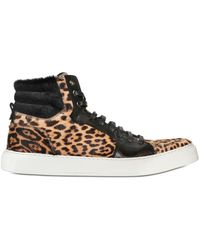 Saint Laurent Leopard Pony High Top Sneakers - Lyst