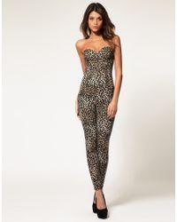 ASOS Collection Asos Bandeau Leopard Jumpsuit - Lyst
