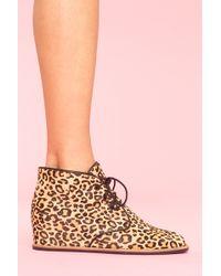 Nasty Gal Leopard Desert Boot - Lyst