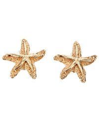 Saint Laurent Starfish Earring gold - Lyst