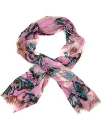 Ollie & Nic - Flutterby Butterfly Print Scarf Pink - Lyst