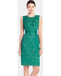 BCBGMAXAZRIA Lace Sheath Dress - Lyst