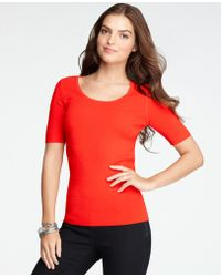 Ann Taylor Petite Scoop Neck Short Sleeve Top - Lyst