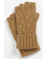 Michael Kors Fingerless Gloves brown - Lyst