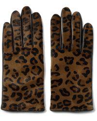 Club Monaco Nicole Haircalf Glove brown - Lyst