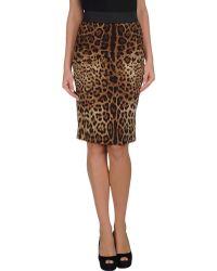 Dolce & Gabbana 34 Length Skirt - Lyst