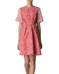 Preen By Thornton Bregazzi Hazel Jacquard Crepe Dress - Lyst