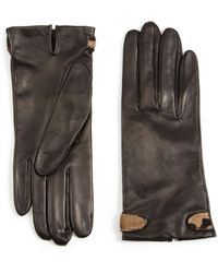 Portolano Hair Calf Trim Leather Gloves - Lyst