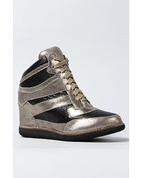 Jeffrey Campbell The Gio Sneaker in Pewter and Black - Lyst