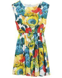 Alice + Olivia Alissa Sleeveless Blouson Print Dress - Lyst