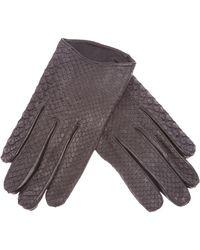 Imoni | Snake Print Gloves | Lyst