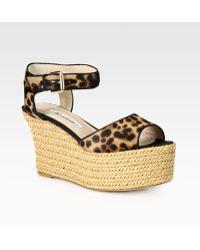 Brian Atwood | Kelsie Leopardprint Pony Hair Raffia Wedge Sandals | Lyst
