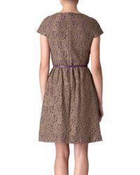 Max Mara Studio Sacha Lace Dress - Lyst
