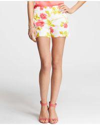 Ann Taylor Garden Floral Print Stretch Cotton Shorts - Lyst