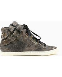Nasty Gal Acid Rock Sneakers - Lyst