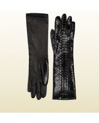 Gucci Black Python Women's Elbow-length Gloves - Lyst