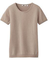 Uniqlo Cashmere Crew Neck Short Sleeve Sweater - Lyst