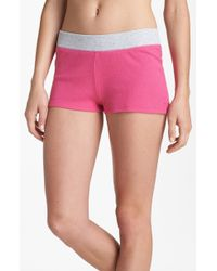 Steve Madden Thermal Knit Shorts - Lyst