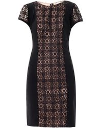 Collette by Collette Dinnigan - Grenada Lace Panel Dress - Lyst