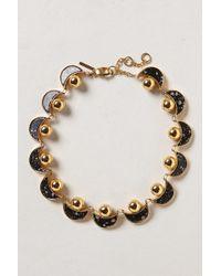 Lele Sadoughi | Horizons Collar Necklace | Lyst