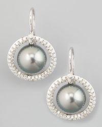Eli Jewels - Gray South Sea Pearl & Diamond Halo Earrings - Lyst