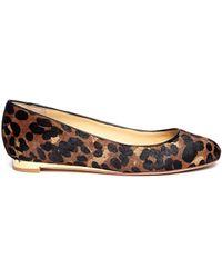 Cole Haan Astoria Leopard Ballet Flats - Lyst