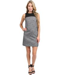 4.collective Leopard Jacquard Dress - Lyst