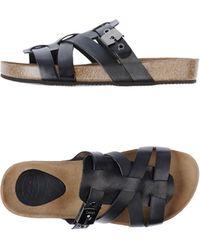 Scholl - Clog Sandals - Lyst