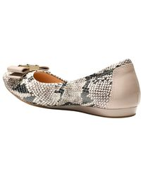 Cole Haan Quinn Snake-Embossed Ballet Flat - Lyst