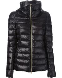 Herno Black Padded Jacket - Lyst