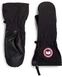 Canada Goose Timbers Puffer Mittens - Lyst