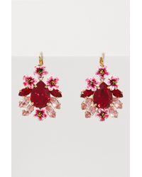 Dolce & Gabbana - Flowers Earrings - Lyst