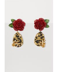 Dolce & Gabbana - Roses And Leopard Earrings - Lyst