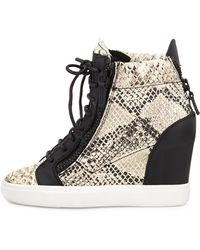 Giuseppe Zanotti Python Embossed Sneakers - Lyst